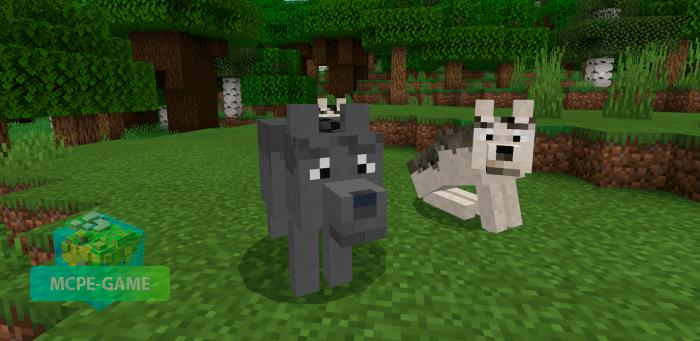 Скачать мод Direwolves для Minecraft PE