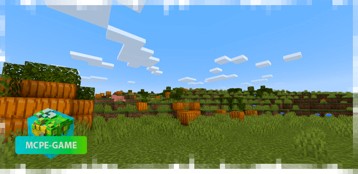 New biome Pumpkin Grove