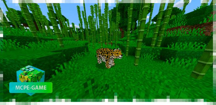Леопарды — новые животные в Майнкрафт ПЕ