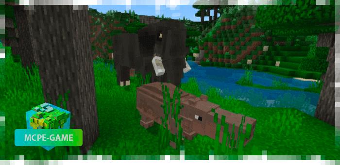 Бегемот — новые животные в Майнкрафт ПЕ