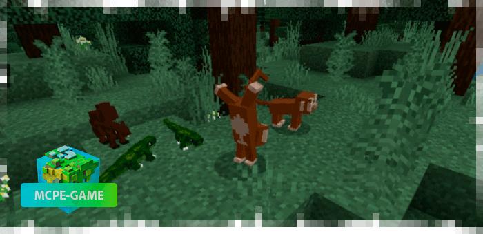 Шимпанзе — новые животные в Майнкрафт ПЕ