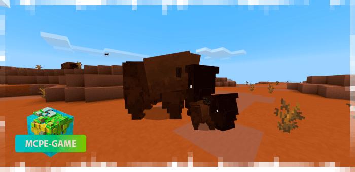 Буйволы — новые животные в Майнкрафт ПЕ