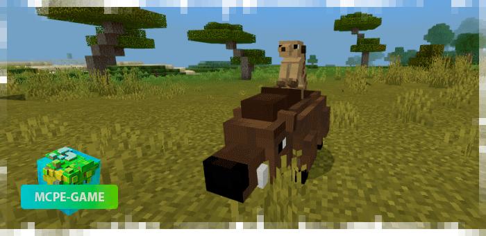 Кабан и сурикат — новые животные в Майнкрафт ПЕ
