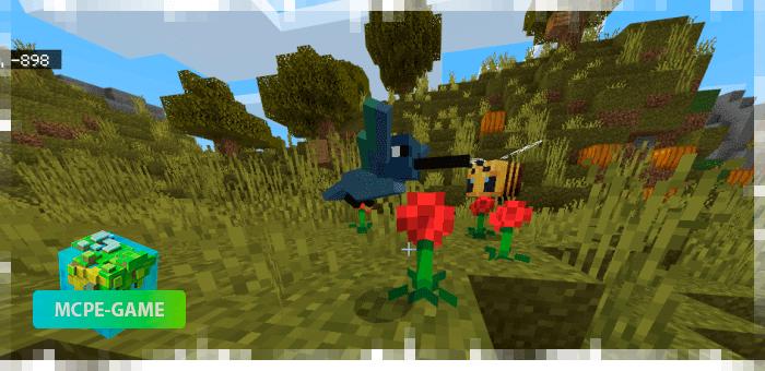Колибри — новые животные в Майнкрафт ПЕ