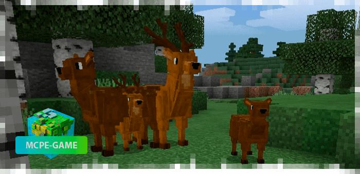 Олени — новые животные в Майнкрафт ПЕ