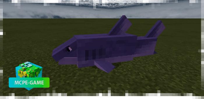 Акулы из мода на животных Mo'creatures