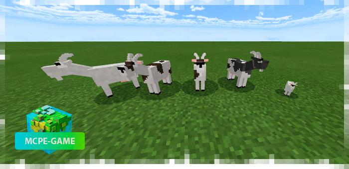 Козы из мода на животных Mo'creatures