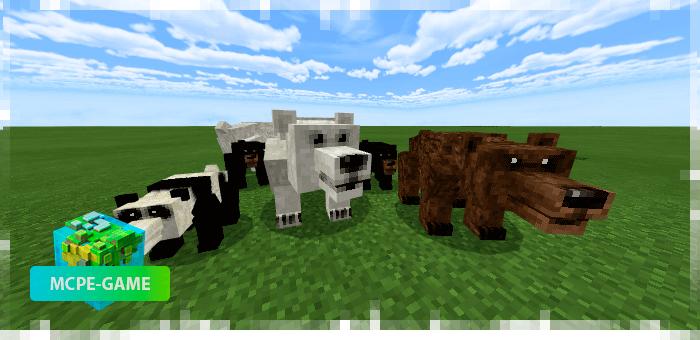 Медведи из мода на животных Mo'creatures