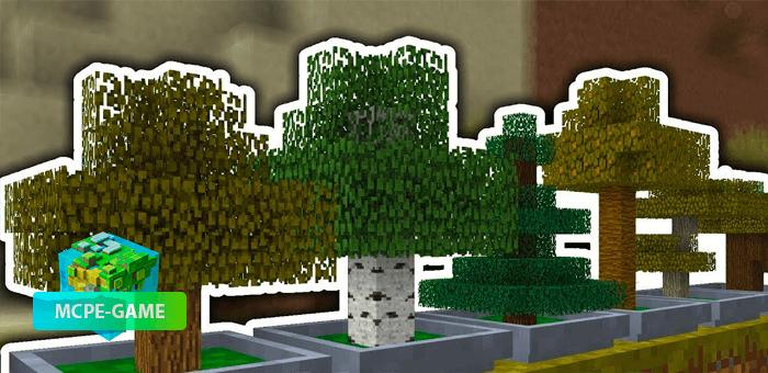 Easy Bonsai — Мод на декоративные деревья Бонсай