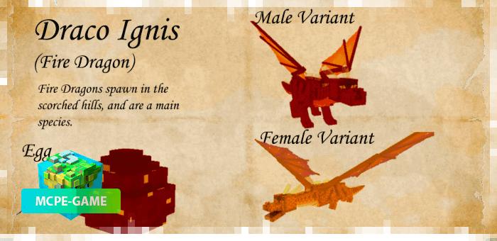 Дракон Игнис из мода Dragon Mounts 2 на Майнкрафт ПЕ