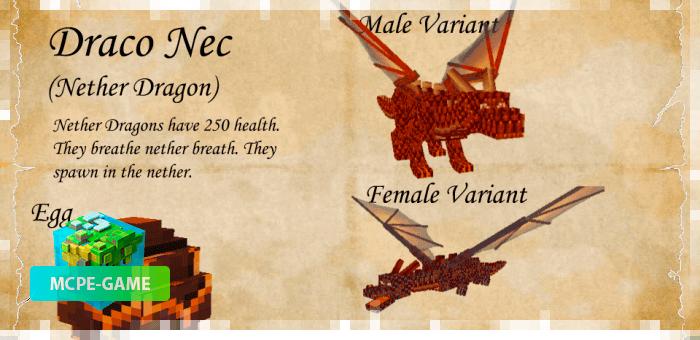 Дракон Нек из мода Dragon Mounts 2 на Майнкрафт ПЕ