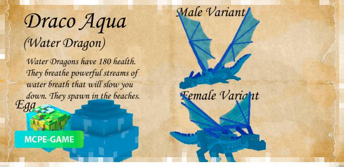 Дракон Аква из мода Dragon Mounts 2 на Майнкрафт ПЕ