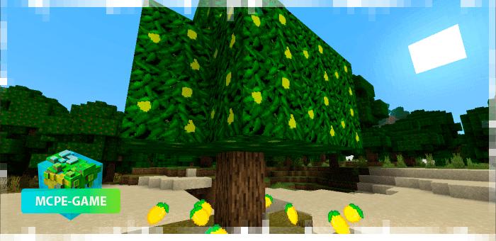 Лимонное дерево из мода на фруктовые деревья MoreTrees на Майнкрафт ПЕ