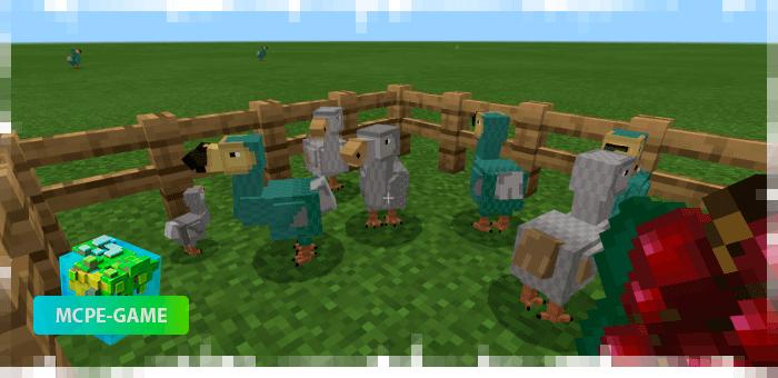 Dodo from the Prehistoric Rift mod in Minecraft PE
