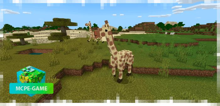 Жирафы из мода на животных World Animals