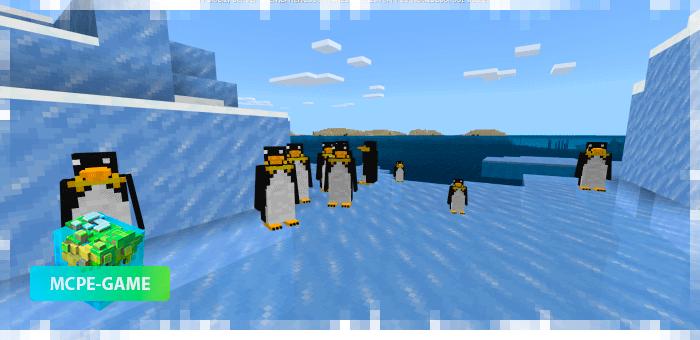 Пингвины из мода на животных World Animals