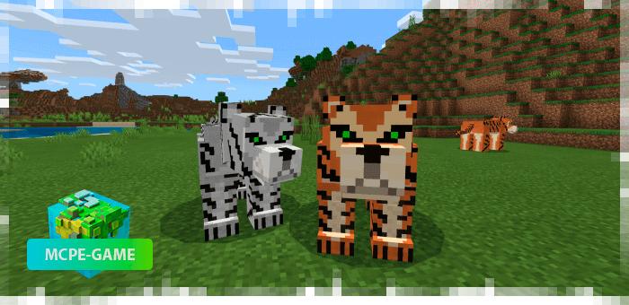 Тигры из мода на животных World Animals