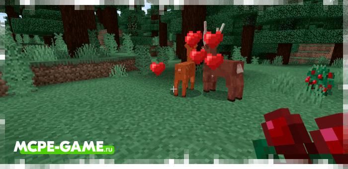 Sika Deer — Мод на оленей в Майнкрафт ПЕ