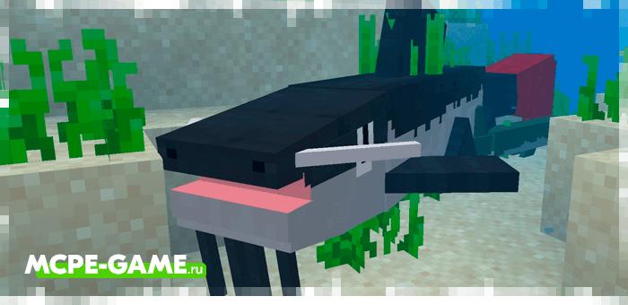 Новая рыба из мода Exoctic Fish для Майнкрафт
