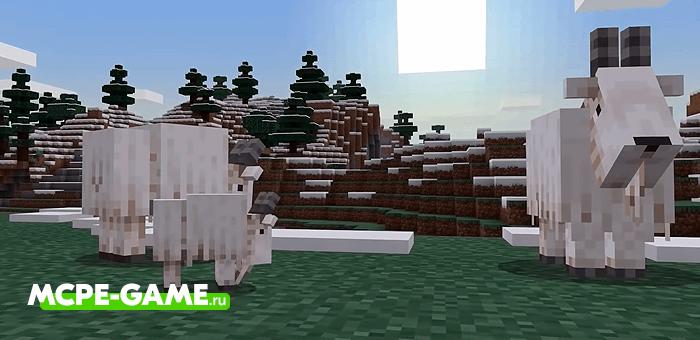 Горные козлы из Майнкрафт 1.16.200.52