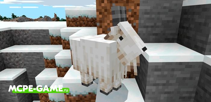 Горные Козлы в Minecraft 1.16.210.51