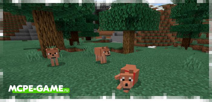 Бурые волки из мода Wolves+ для Minecraft