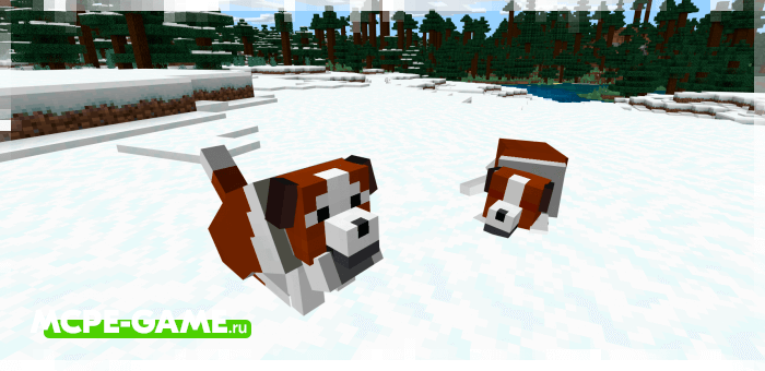 Сенбернар из мода Wolves+ для Minecraft