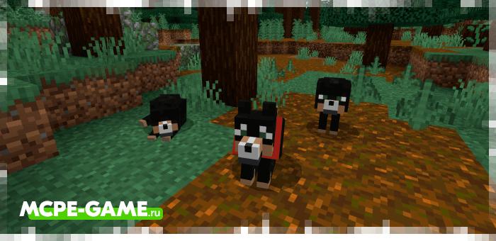 Черные волки из мода Wolves+ для Minecraft