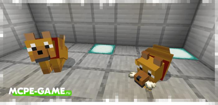 Старая версия сенбернара и дикой собаки из мода Wolves+ для Minecraft