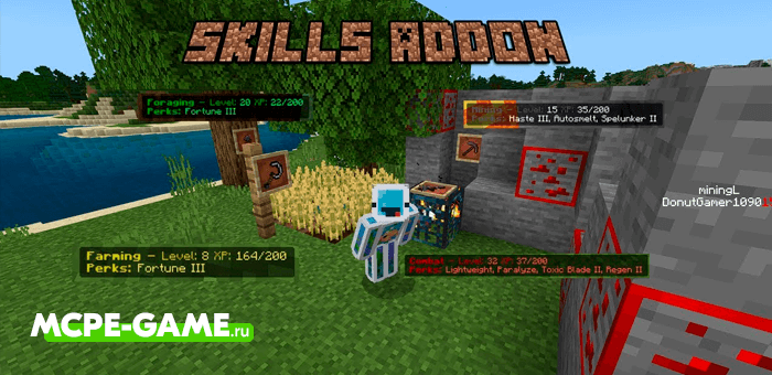 Minecraft Skills Addon
